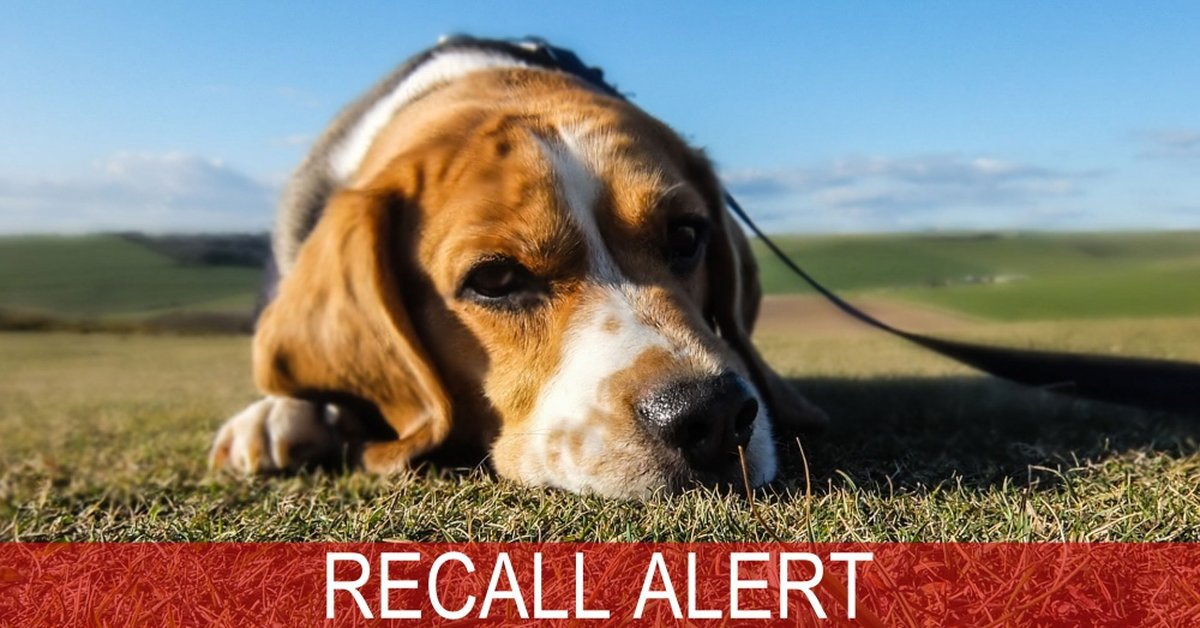 BREAKING NEWS: Major Pet Food Recall Due To Elevated Levels Of Beef Thyroid Hormone
