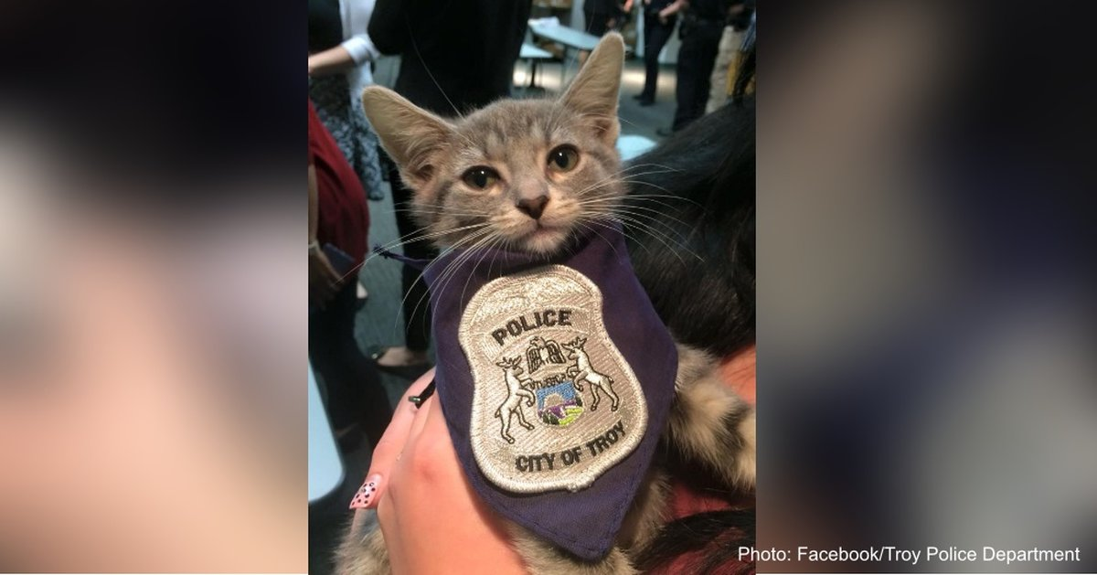 "Since Joining The Police Department Last Week, ""Pawficer"" Donut Is Ready To Serve"