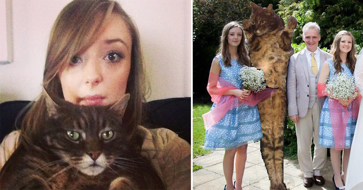 This Woman Replaced Her Ex With A Cat After A Bad Breakup And Her New Pictures Are Going Viral