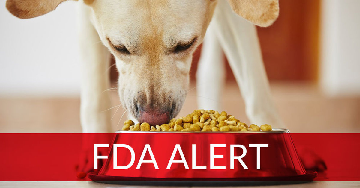 FDA Discovers Foods That May Be Causing Heart Disease In Dogs