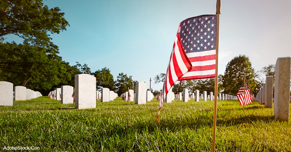 What Makes Memorial Day Different From Veterans Day | The ...