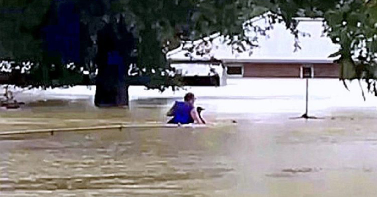 Man Risks His Life Retrieving Stranded Animals As The Floodwaters Kept Rising