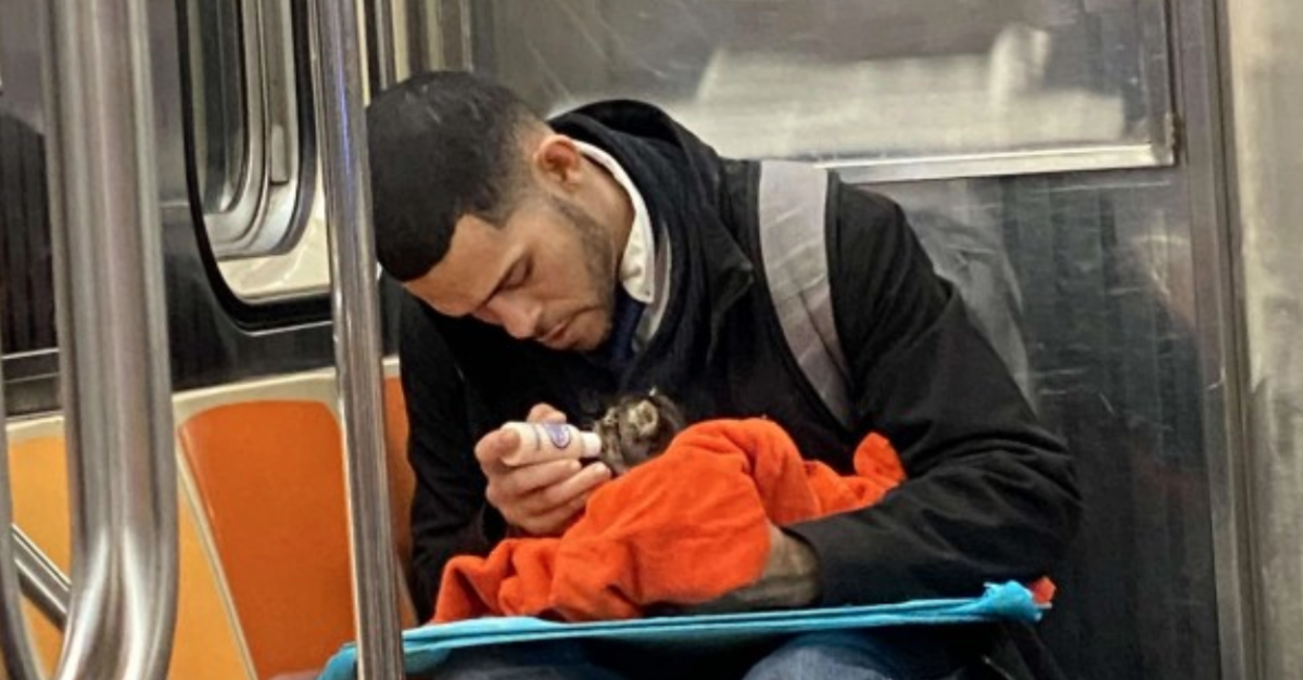 Man Goes Viral For Bottle-Feeding A Tiny Kitten On The Subway