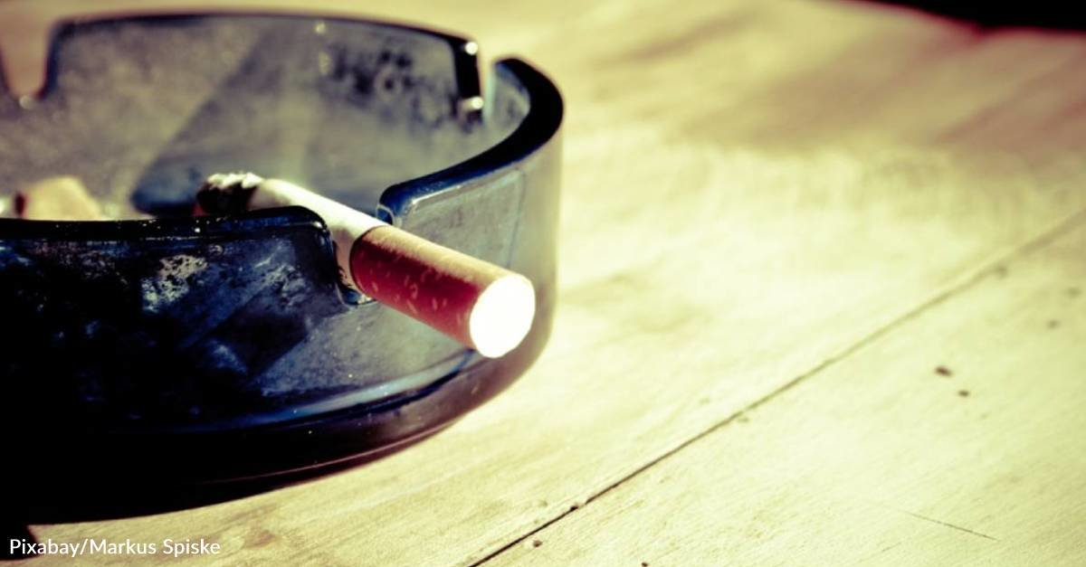 New Study Finds Increased Dementia Risk in Smokers and Those with Cardiovascular Disease