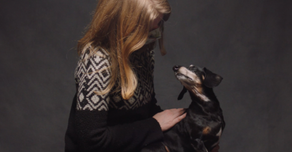 Touching Short Film Shows The Role Dogs Play In Human Lives