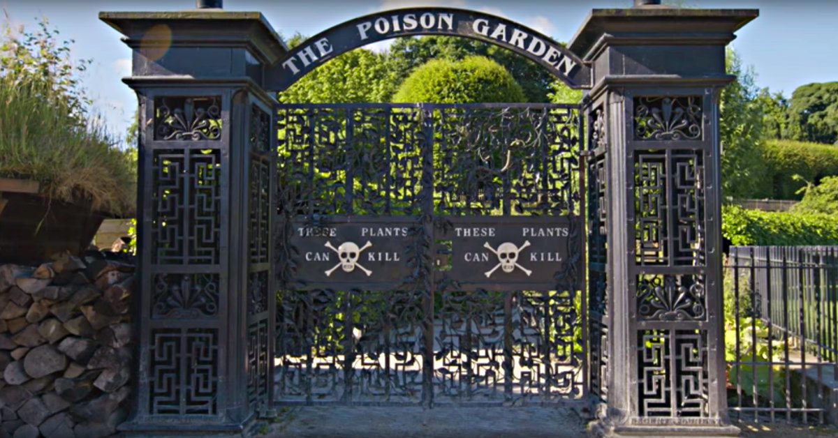 Take A Tour Of The Poison Garden Of Alnwick Castle Where Every