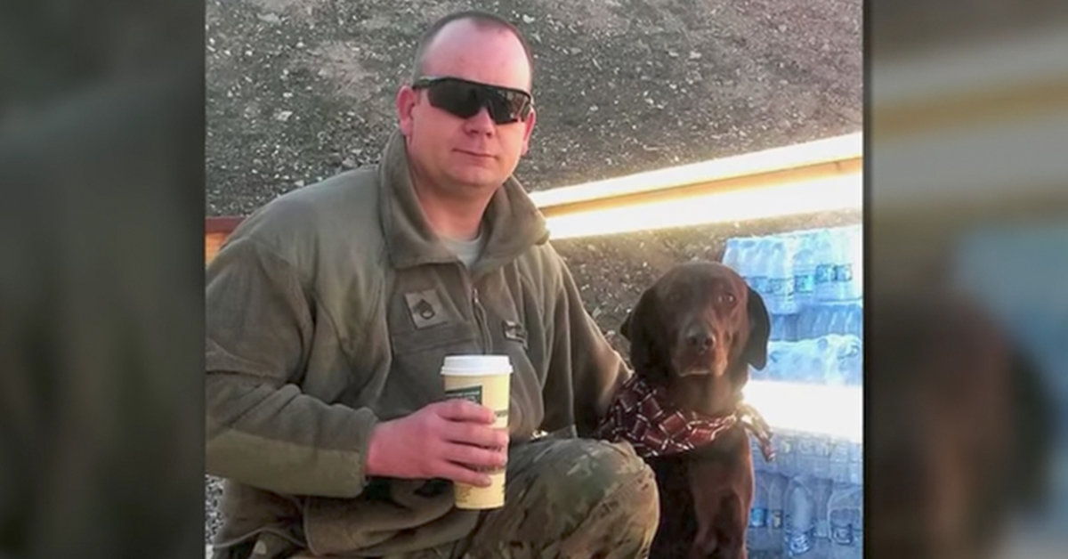 Five Brave Military Dogs Just Got The Recognition They Deserve