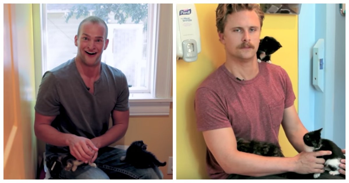 When A Group Of Reluctant Men Were Forced To Hold Kittens For The First Time, Hilarity Ensued