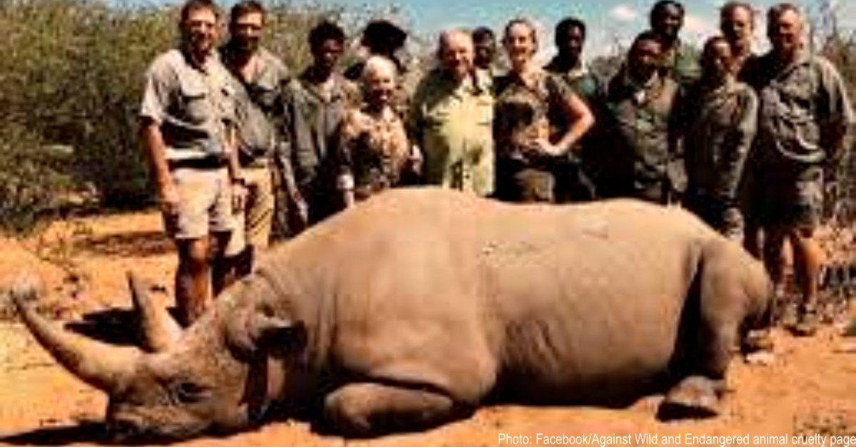 Billionaire Trophy Hunter Kills Endangered Black Rhino With No Regrets, And U.S. Allows Him To Import Body Parts