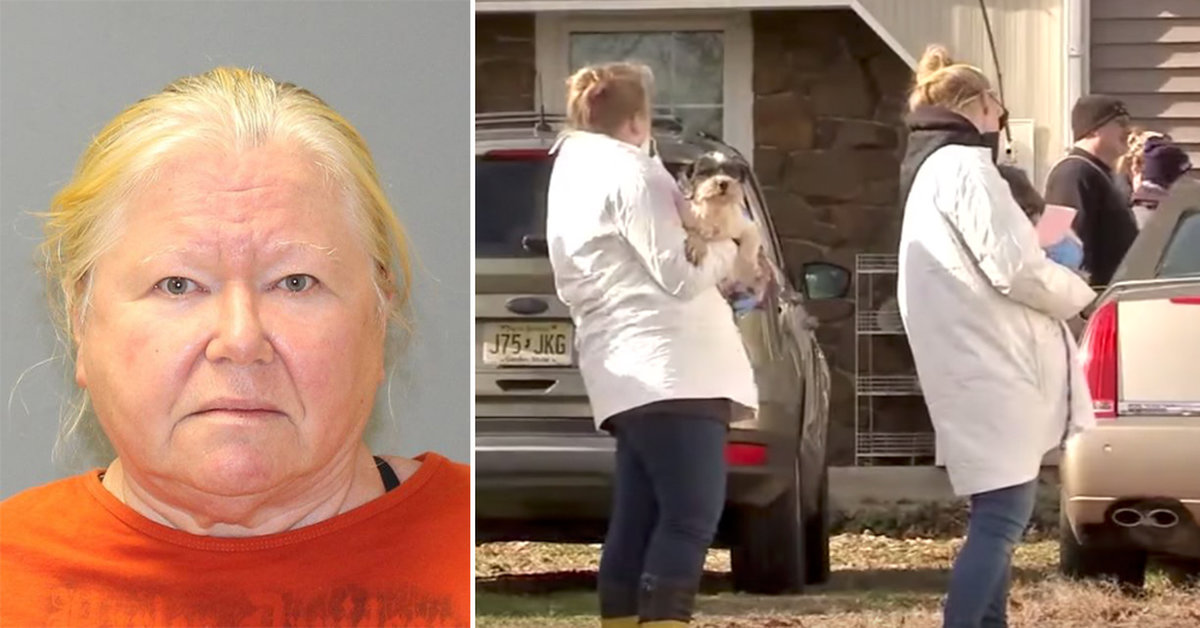 44 Dead Dogs Found In Woman's Freezer