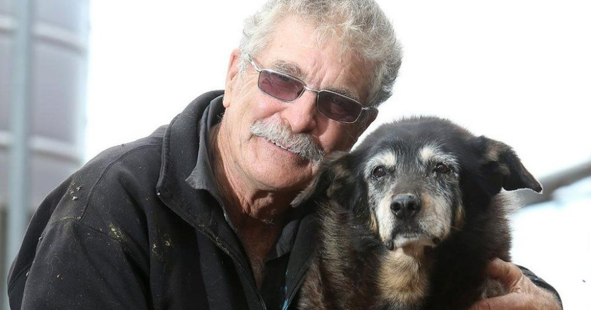 Maggie 'The Oldest Dog In The World' Has Passed Away