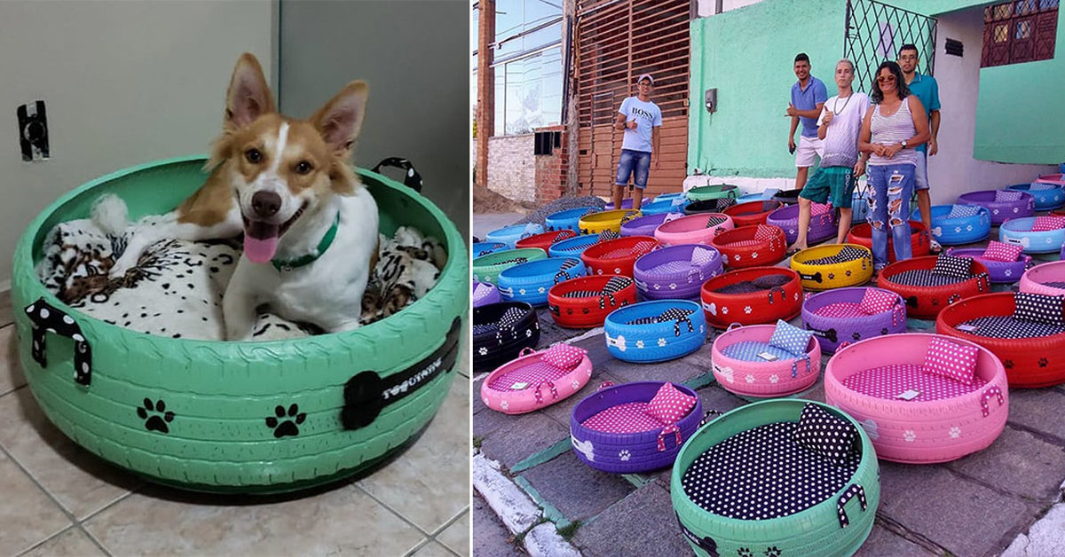 Brazilian Artist Turns Old Tires Into Adorable Animal Beds Familypet