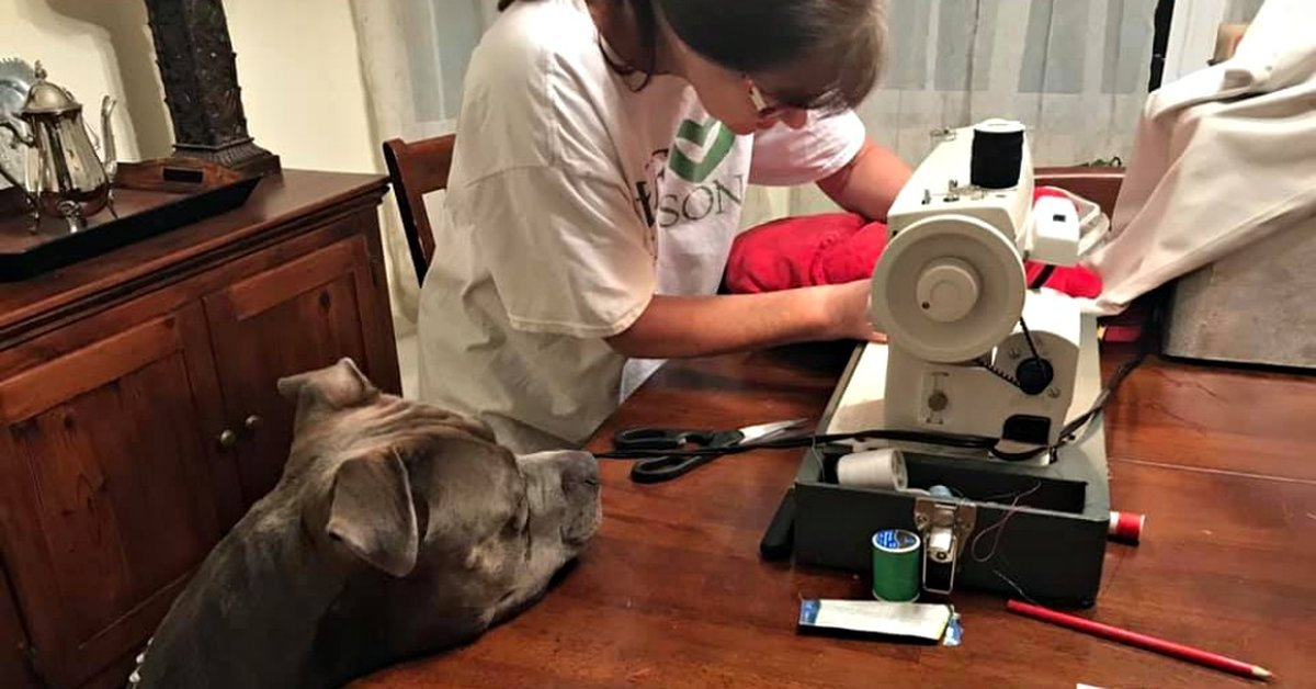 Distraught Dog Whines As Grandma Performs 'Emergency Surgery' On His Favorite Toy