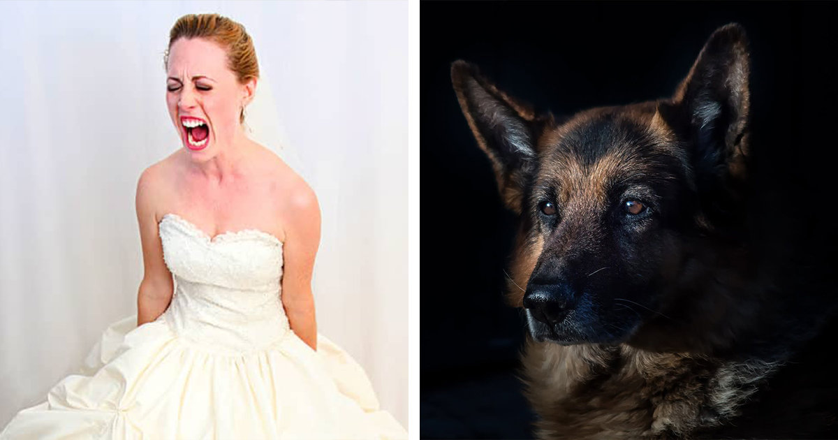 Bride-To-Be Won't Speak To Her Fiancé After He Used Wedding Funds For Dog's Life-Saving Surgery
