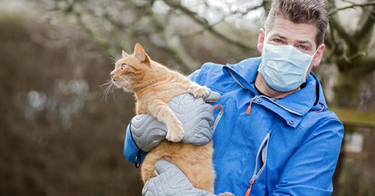 """New """"Vaccine"""" May Stop People From Having An Allergic Reactions To Cats"""