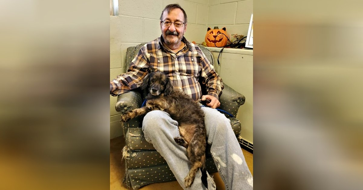 Man Walks Into Shelter And Asks To See Old Dog In Need Of Home, Then Adopts Him
