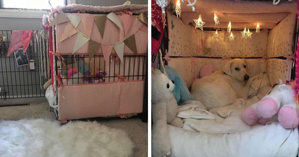 Woman Gives Her Rescue Dog's Crate A Makeover And Transforms It Into An Adorable Hideaway
