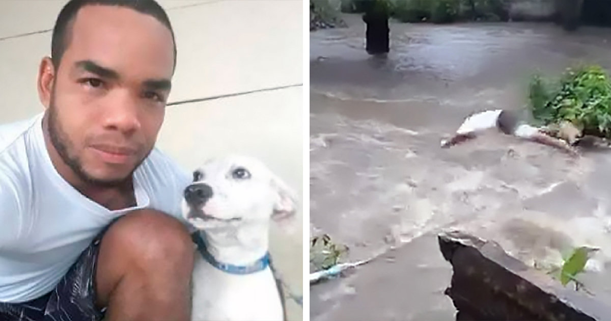 Man Dives Into A Deadly Torrent To Save His Dog After It Was Swept Away