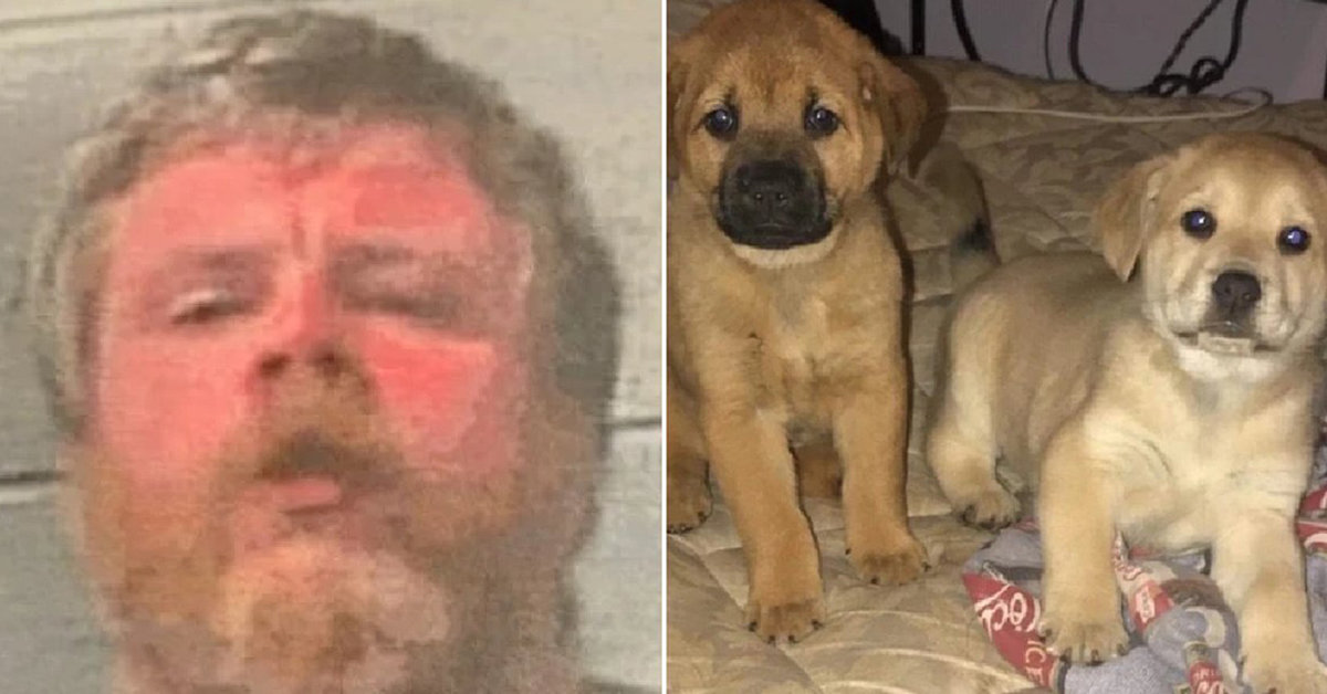 Kentucky Man Arrested For Skinning Neighborhood Dogs To Make A 'Doggy Coat'