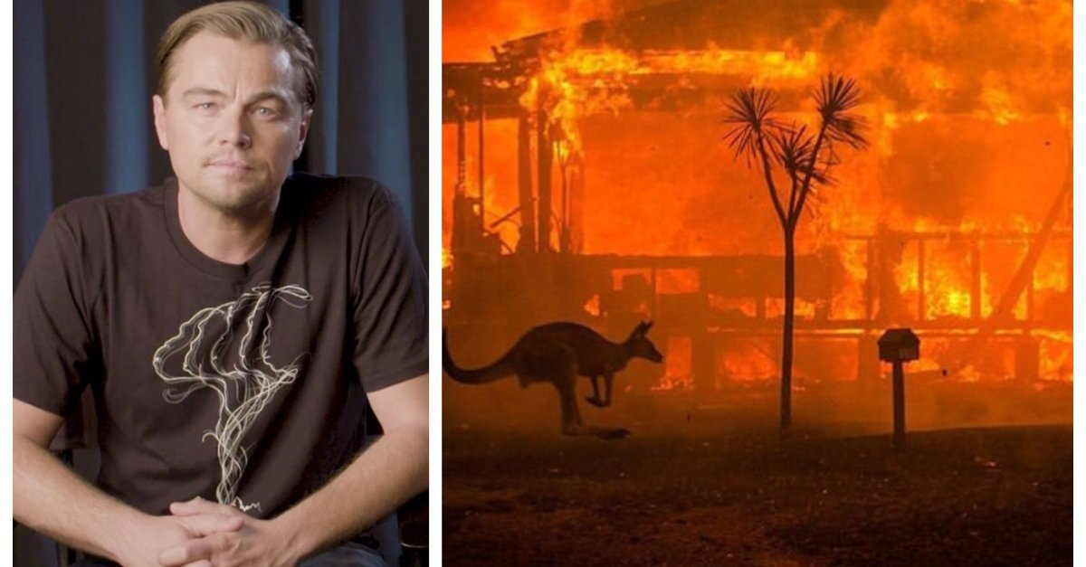 Leonardo DiCaprio Starts New Australian Wildlife Fund And Donates $3 Million To Relief Efforts