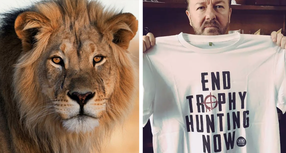 Ricky Gervais Slams Trophy Hunters Five Years After The Death Of Cecil The Lion