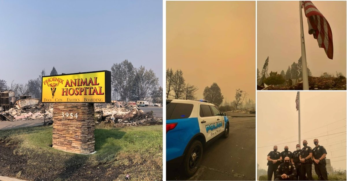 Animal Hospital Owner and Staff Evacuate Every Pet Before Wildfire Burns It To The Ground